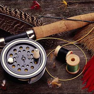 Охотничьи и рыболовные магазины Талицы